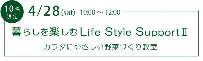 LifeStyleSupport2