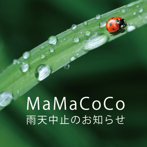 MaMaCoCo雨天中止のお知らせ